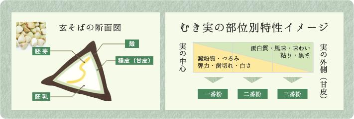 https://matsuyaseifun.co.jp/img/type_img04.png